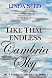 Like That Endless Cambria Sky (Main Street Merchants Book 2)