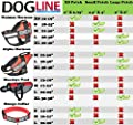 Dogline Removable Interchangeable SERVICE DOG patches - for vests, harnesses, collars. Unimax, Alpha, MaxAire, Omega
