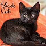 img - for Just Black Cats 2017 Wall Calendar (Cat Breed Calendars) book / textbook / text book