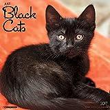 Just Black Cats 2017 Wall Calendar (Cat Breed Calendars)