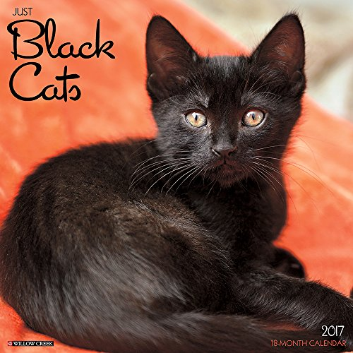 Just Black Cats 2017 Wall Calendar (Cat Breed Calendars)