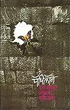 Papillon (Marathi)