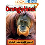 Orangutans! Learn About Orangutans and Enjoy Colorful Pictures - Look and Learn! (50+ Photos of Orangutans)