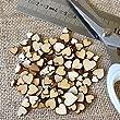 Artcuts Mini Mixed Wooden Hearts Embellishments for Craft