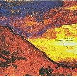 Falling Down a Mountain (W/CD) [Vinyl]