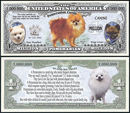 Lot of 25 BILLS - Pomeranian Dog Million w/ Puppy & Adult Pics, Facts on Back (Pics Of Dogs W compare prices)