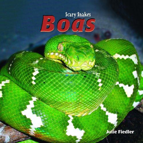 Boas (Scary Snakes)