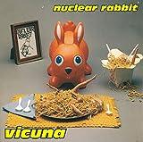 Vicuna