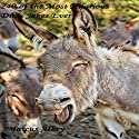 240 of the Most Hilarious Dirty Jokes Ever Audiobook by Marcus Albey Narrated by Ted Gitzke