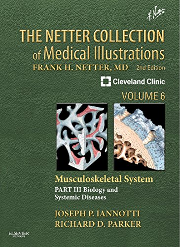 The Netter Collection Of Medical Illustrations: Musculoskeletal System, Volume 6, Part Iii - Musculoskeletal Biology And Systematic Musculoskeletal Disease: Volume 6 (Netter Green Book Collection)