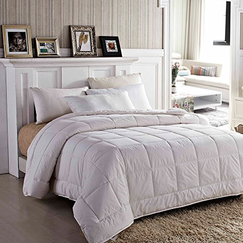 Find Bargain Amor&Amore Soft Gentle Lightweight Warm Down Alternative Comforter,Size 90 x 90 Inc...