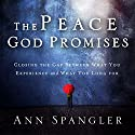 The Peace God Promises: Closing the Gap Between What You Experience and What You Long For Audiobook by Ann Spangler Narrated by Connie Wetzell