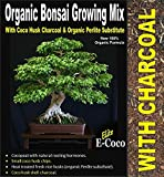BONSAI TREE SOIL - BONSAI TREES COMPOST with CHARCOAL (5 LTS) CAN BE USED INDOOR FOR POTS & REPOTTING - READY TO USE