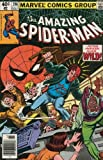 img - for The Amazing Spider-Man #206 (Vol. 1) book / textbook / text book