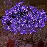 Lychee 5M Guirlande Solaire Lumineuse 50 Fleurs LED Décoration pour Noël, Fêtes, Mariage, Terrasse, Jardin, Pelouse etc.(pourpre)...