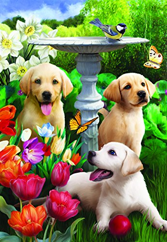 Playful Pups - 300 Piece Jigsaw Puzzle By SunsOut Inc.