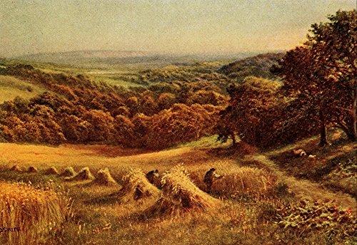 daniel-sherrin-in-unfamiliar-england-1910-sussex-harvest-field-artistica-di-stampa-6096-x-9144-cm
