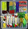 Fishing Lures Lot with Tackle Box,AGadget 204PCS/Lot Fishing Tackle Hard Soft Plastic Fishing Lures Freshwater Saltwater Fishing Kit Crankbait Minnow VIB Frog Lures Jighead Spoonbait Shrimp more by AGadget