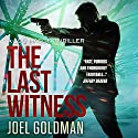 The Last Witness: Lou Mason Thrillers, Book 2 Audiobook by Joel Goldman Narrated by Kevin Foley