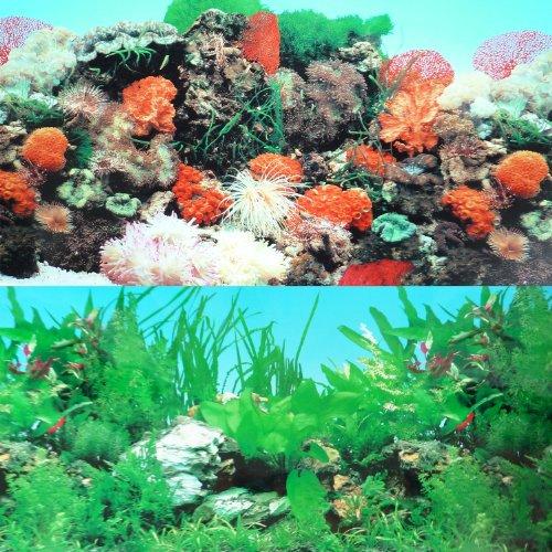 ... 48 Double Sided Fish Tank Aquarium Background Tropical Reef eBay