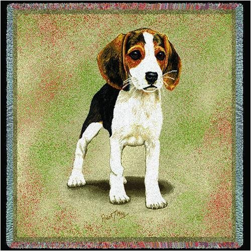 Pure Country 1200-LS Beagle Puppies Pet Blanket, Canine on Beige Background, 54 by 54-Inch