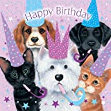 Assorted Animals Cats and Dogs Birthday Card Sue Hall