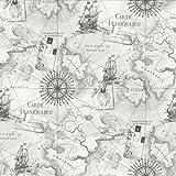 Navigator Silver Wallpaper - Arthouse