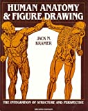 img - for Human Anatomy and Figure Drawing book / textbook / text book