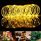 LE® 33ft 100 LED Solar Rope Lights, Waterproof Outdoor Rope Lights, 3000K, Warm White, Portable, LED String Light with Light Sensor, Ideal for Wedding, Party, Decorations, Gardens, Lawn, Patio