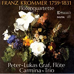 Flute Quartet in G Major, Op. 92: IV. Allegro