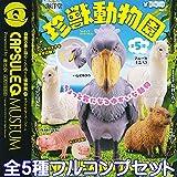 珍獣動物園 カプセルQミュージアム ユニーク アニマル かわいい 動物 フィギュア グッズ ガチャ 海洋堂(全5種フルコンプセット)