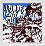 We Are You On Fire by The Love and Terror Cult