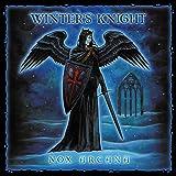 Winter's Knight
