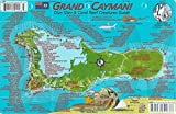 img - for Grand Cayman Island Dive Map & Reef Creatures Guide Waterproof Fish Card book / textbook / text book