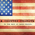 The Best Of Garth Brooks: A Country T...