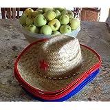 Childs Straw Cowboy Hat With Plastic Star (1 Dozen) - BULK