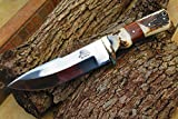 DKC-716 BANCHEE Bowie Fixed Blade Hunting Custom Handmade Knife (Stainless 440c Blade)