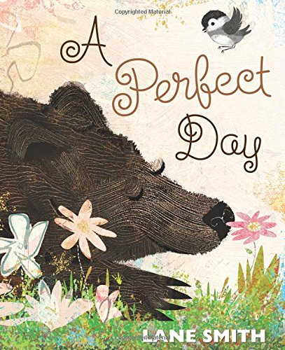Book Cover: A Perfect Day
