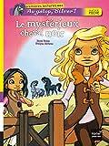 """Afficher """"Le mystérieux cheval noir"""""""