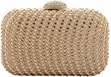 CHEMB Women's Clutches (A0515-BD-6-GE, Golden)