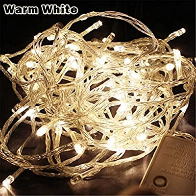 Greenyourlife 20M 66ft 200 Leds Flexible LED Fairy String Lights Waterproof with Control Box for Indoor Outdoor Gardens, Homes, Christmas Wedding Party Decoration - Warm White +Stylus Dust Plug