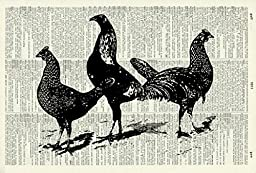 Trio Of Chickens - Vintage ART PRINT - ART PRINT - Illustration - Animal Art Print - Farm Picture - Vintage Dictionary Art Print - Wall Art - Home Décor - Book Print - Kitchen Art Print 39D