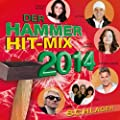 Der Hammer Hit-Mix 2014 - Schlager