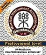 Model PP-PR-ST101-4 Professional level Pipa string set