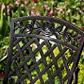 2 x Rose Metal Garden Chair (Self Assembly)