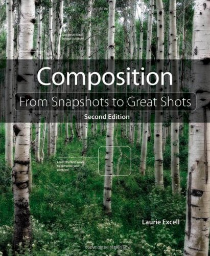 Composition:From Snapshots to Great Shots