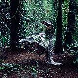 Donkey (Vinyl)