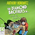 South by South East: A Diamond Brothers Mystery (       UNABRIDGED) by Anthony Horowitz Narrated by Nickolas Grace