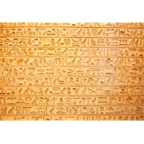 LFEEY 10x8ft Wall Hieroglyphs Photo Backdrop Ancient Egypt Antiquity Civilisation Culture Hieroglyphic Word Stone Sculpture Background for Photography Travel Tourism Photo Booth Prop (Color: NSW05965, Tamaño: 10x8ft)