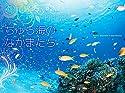 2015うみまーる中判ムーンカレンダー `ちゅら海のなかまたち?Friends' (月の満ち欠け)